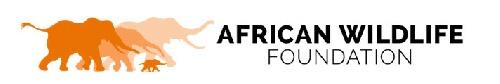 AFRICAN WILDLIFE FOUNDATION: Chief Executive Officer, Nairobi, Kenya and Washington, DC